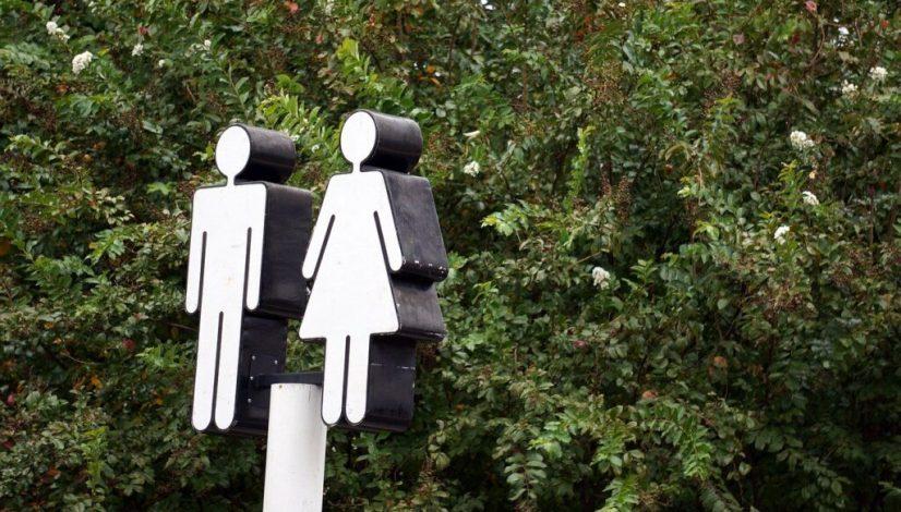 gender-norm